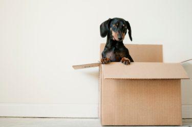 単身者の引っ越しは賢く安く!〜引っ越し費用を下げる8つのワザ〜